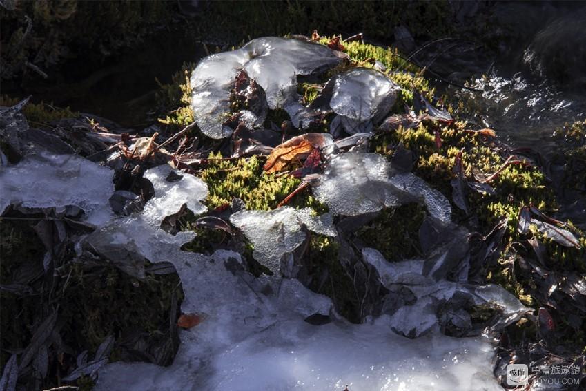 冰4.jpg