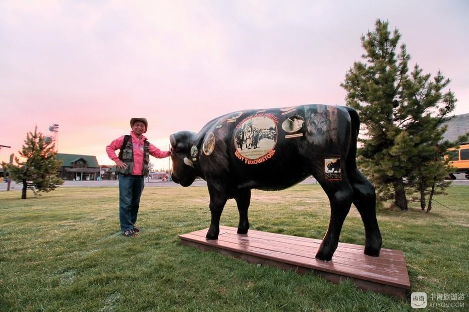 12、黄石镇有不少野牛雕塑。.jpg