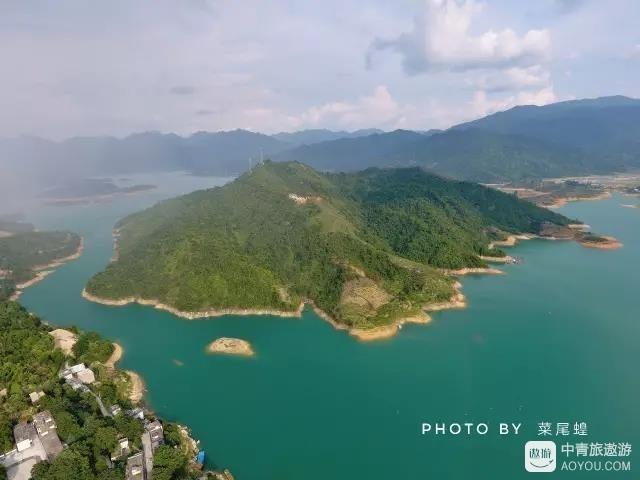 在广东海拨最高的天池避暑,遇见连州水晶梨丰收