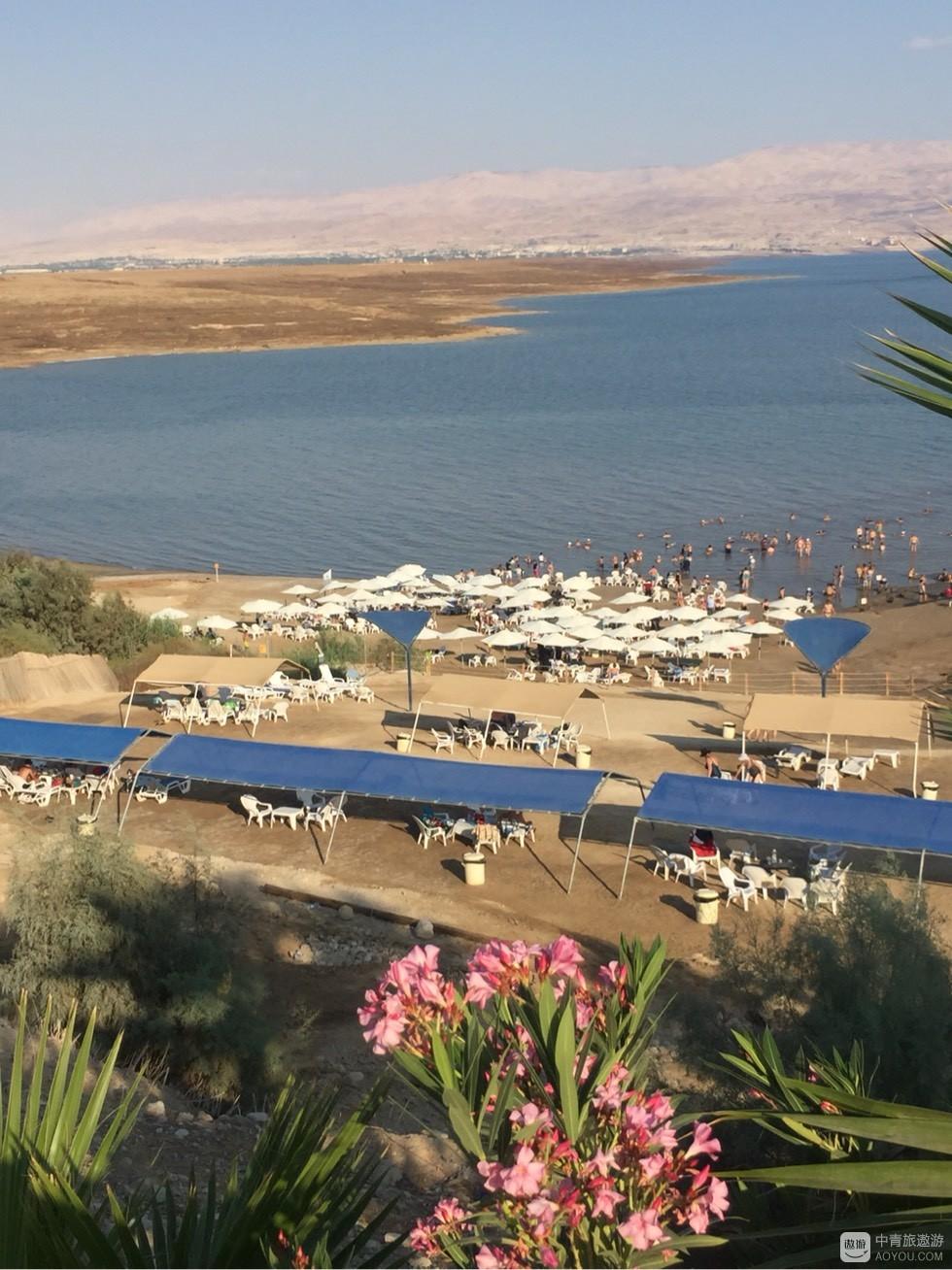 以色列之旅:死海
