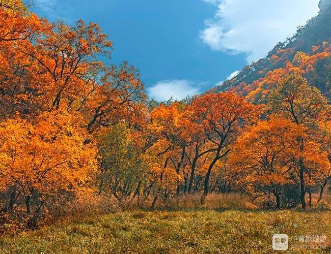 湄江的秋日,最美时刻之一