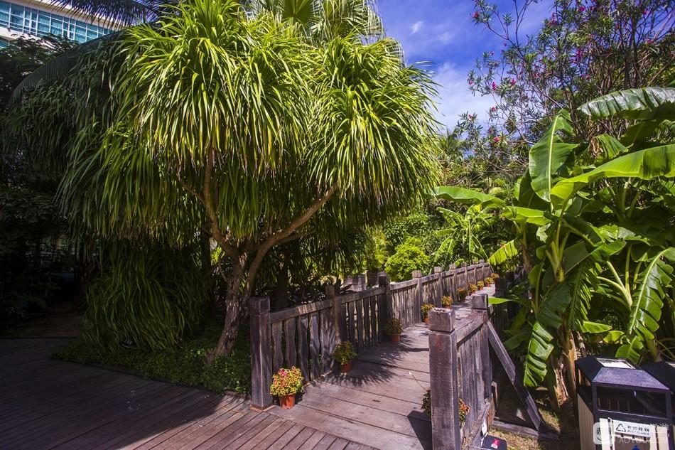 园林里也是郁郁葱葱,各种叫不出名儿的热带植物。布局想必也是专业设计,一步一景。有小桥、有流水,微咸的 ...