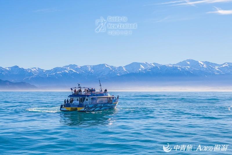 17凯库拉的意外惊喜-观鲸船.jpg