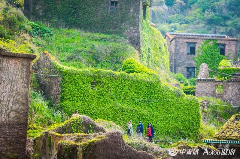 传说中神秘的东海无人村,这个绿野仙踪的季节,又出现了