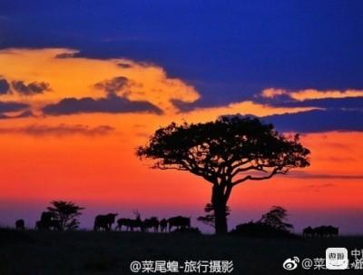 非洲的历程,摄影与旅行一起成长