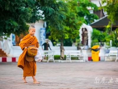 泰国的寺庙没有伙房,僧侣们吃饭怎么办