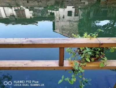 """苏州同里古镇8月与华为手机""""自然有故事"""""""