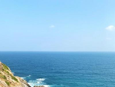 这个寒冬,只想在海南岛虚度时光!