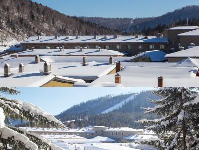从哈尔滨到雪乡,咖啡、小酒馆和山间的雪 ——不打卡不...