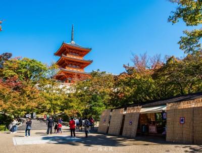 赏红叶、逛古寺、逛神社,深秋感受日本京都的韵味!