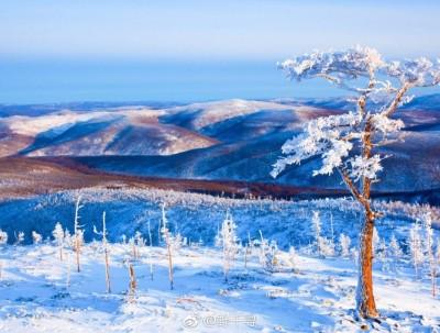风中闻草木,雪里见江山~中国最冷小镇在呼中????