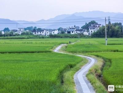 """在""""中国影视村""""南屏,品一首岁月的歌"""