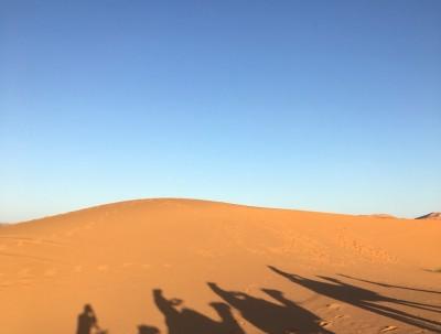 撒哈拉大沙漠掠影