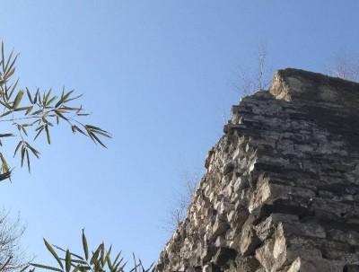 明城墙遗址公园的梅花开了