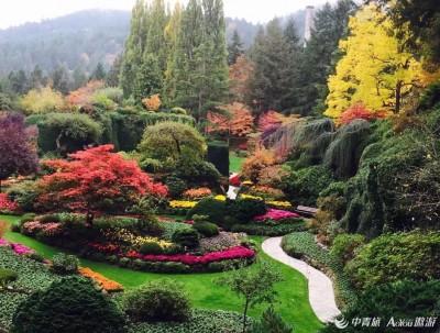 布查特,最美的花园,第一篇!