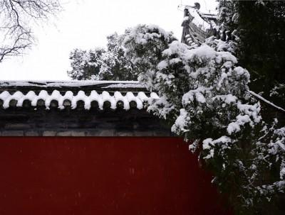 雪中赏景,别有一番风味的皇家园林