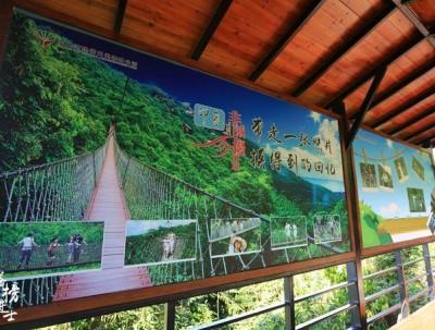 春节来海南,走进首届三亚国际花卉节,冬季最热的地方...