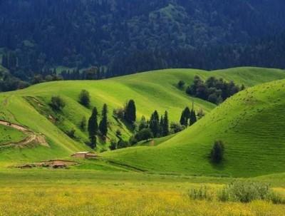 收藏!盘点国内12个最值得去的大草原。