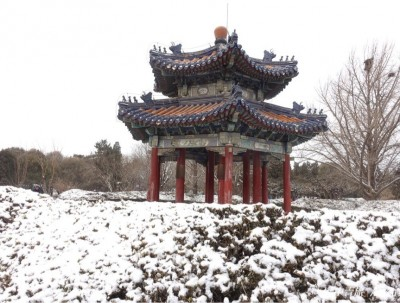 北京第一场春雪游天坛