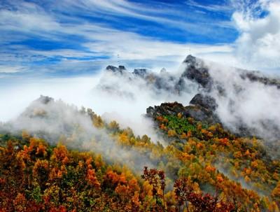 """国庆哪里游,来白石山体验红桦""""枫""""情"""