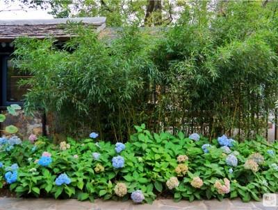 2天1晚在北京最有故事的姥姥家,收获秋天唤醒童年。