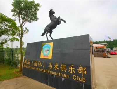 夏令营去哪玩?带你走进新浦东青春韵动健康之旅