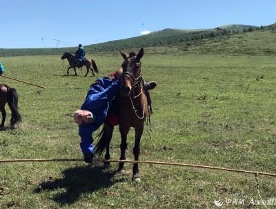 美丽的内蒙古锡林郭勒大草原