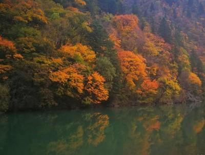 【自驾游】赏红叶!看雪景!拍大片!览尽川西最美秋色!