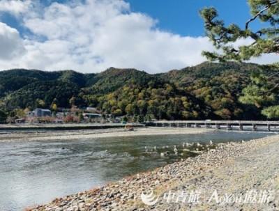 深秋日本—京都篇