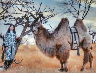 【马玛丽旅行志】草原有冰雪,驼铃响古道,赴一场内蒙...