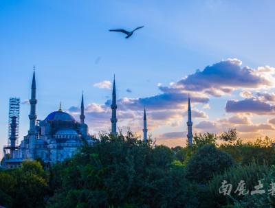 """谁说土耳其""""蓝色清真寺""""是蓝色的,我一点也没看出来"""