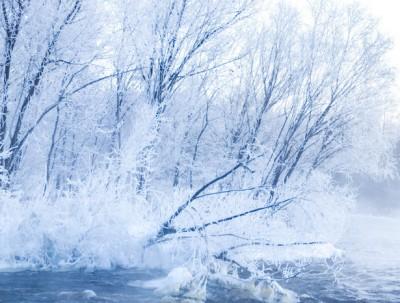 冬天到中国北端黑河看雾凇,到俄罗斯一日游