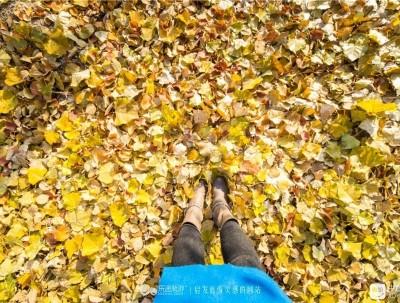 杏花沟湿地公园,霜降后的一抹秋色