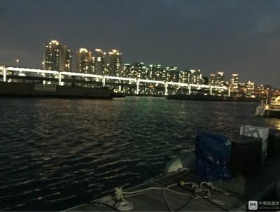 彩色浪漫的釜山和首尔仅一站KTX的距离,这里的海鸥吃虾条