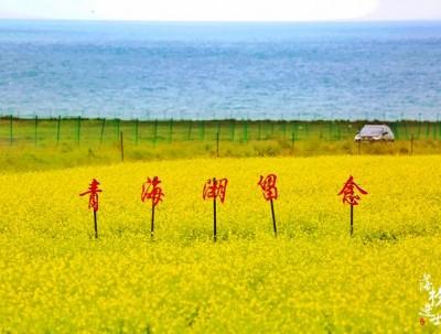骑行青海湖,环保也修行