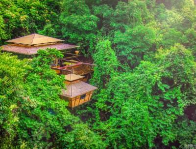 住温泉树屋听泉水叮咚 在九州驿站享返璞归真的栖息之旅