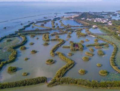 徜徉在太湖之中,探寻三山岛的秘境