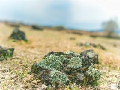 熔岩台地:徒步穿越火山台地