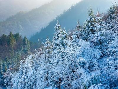 过年哪里去?驱车3小时,到离武汉市最近的高山滑雪场去...