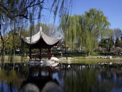 陶然亭公园:好友携酒湖边坐,与君一醉一陶然