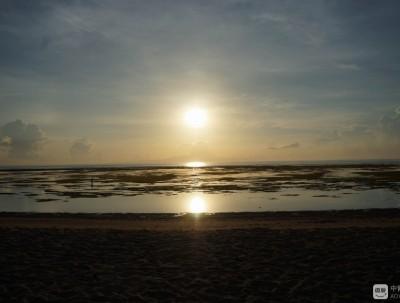 巴厘岛游记之四:又见老牛犁田