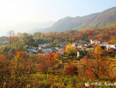 2018年塔川红叶指数预报,再过半月这里将会比黄山和宏村...