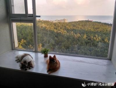 十月在威海感受威海市区的碧海蓝天走访中外名人故居