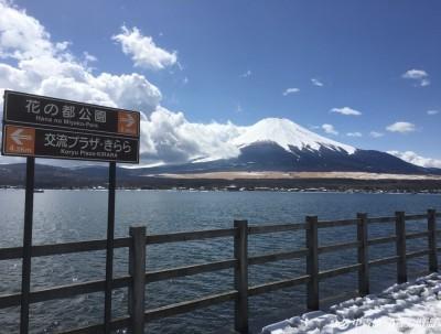 春天的富士山