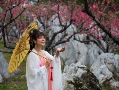春赏桃花夏赏荷,广州周边赏花攻略