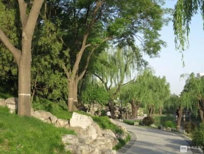 柳荫公园:柳条低垂,湖水碧绿,演绎江南水乡风景