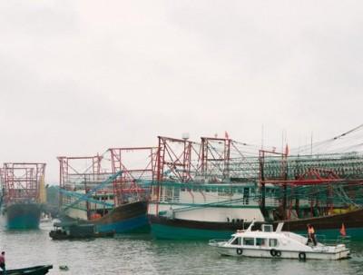 广西防城港开海啦,好吃好玩,瞬间俘获你的吃货心