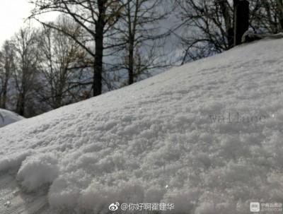 蒙古国狩猎,感受一半秋一半冬的美景