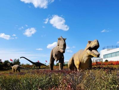 第一次走进花鸟源头的古化石王国!